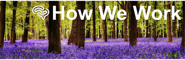 How We Work. How We Work Bluebells